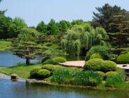 Chicago Botanic Garden Web Cam
